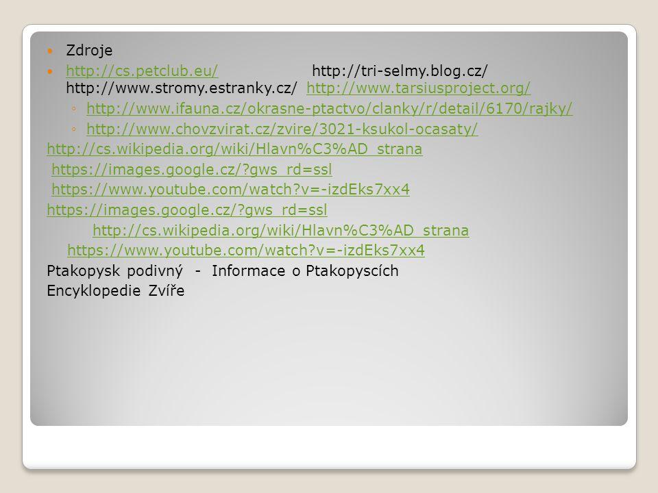 Zdroje http://cs.petclub.eu/ http://tri-selmy.blog.cz/ http://www.stromy.estranky.cz/ http://www.tarsiusproject.org/ http://cs.petclub.eu/http://www.t