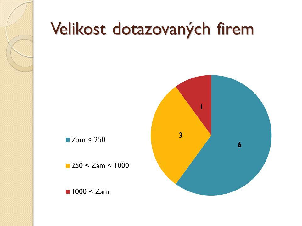 Velikost dotazovaných firem