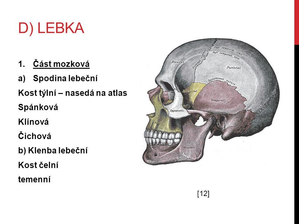 D) LEBKA 1.Část mozková a)Spodina lebeční Kost týlní – nasedá na atlas Spánková Klínová Čichová b) Klenba lebeční Kost čelní temenní [12]