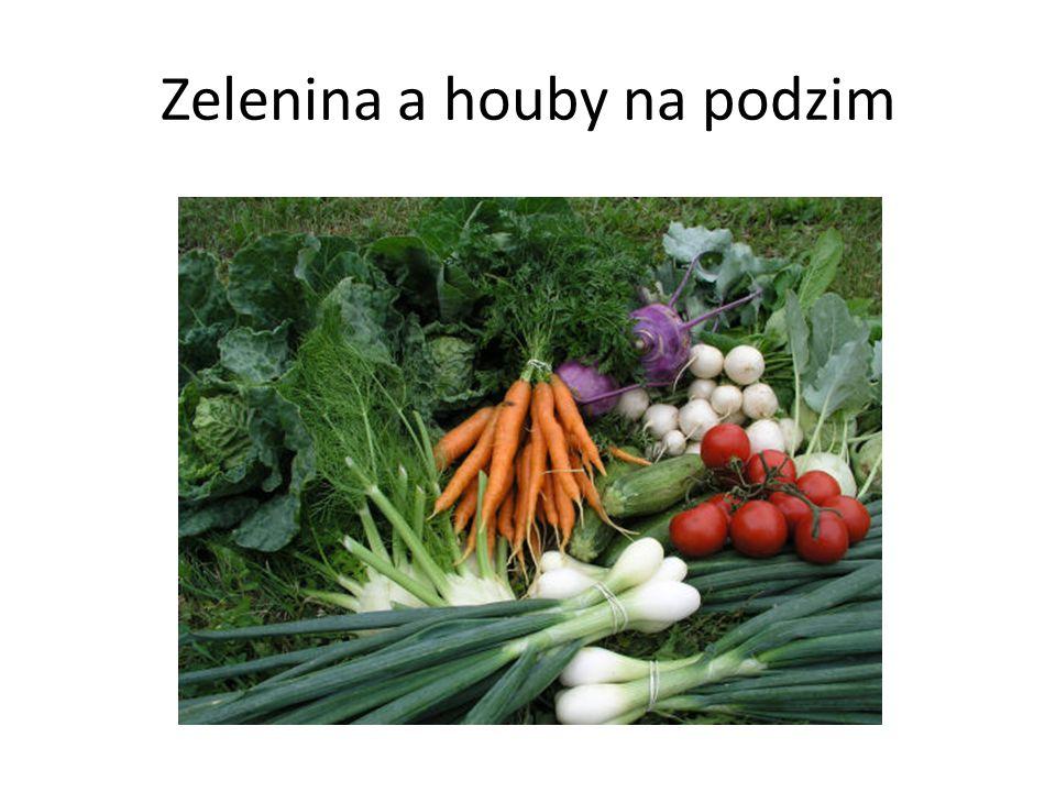 Zelenina a houby na podzim