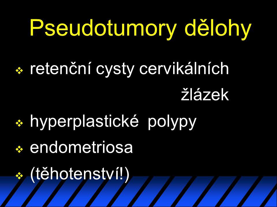 Pseudotumory dělohy v retenční cysty cervikálních žlázek v hyperplastické polypy v endometriosa v (těhotenství!)