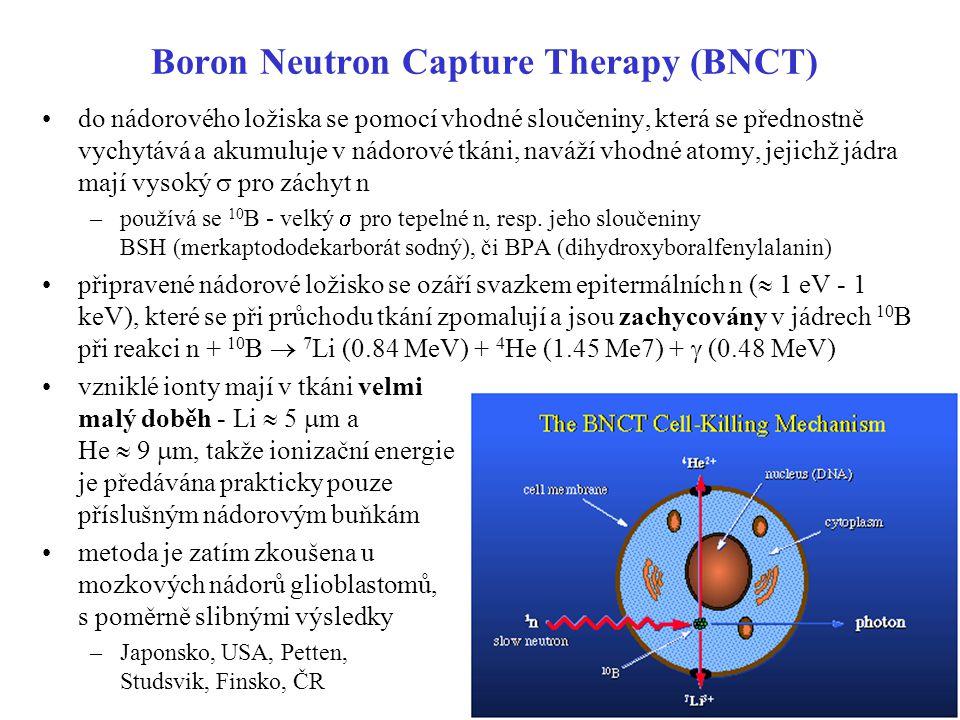 Boron Neutron Capture Therapy (BNCT) do nádorového ložiska se pomocí vhodné sloučeniny, která se přednostně vychytává a akumuluje v nádorové tkáni, na