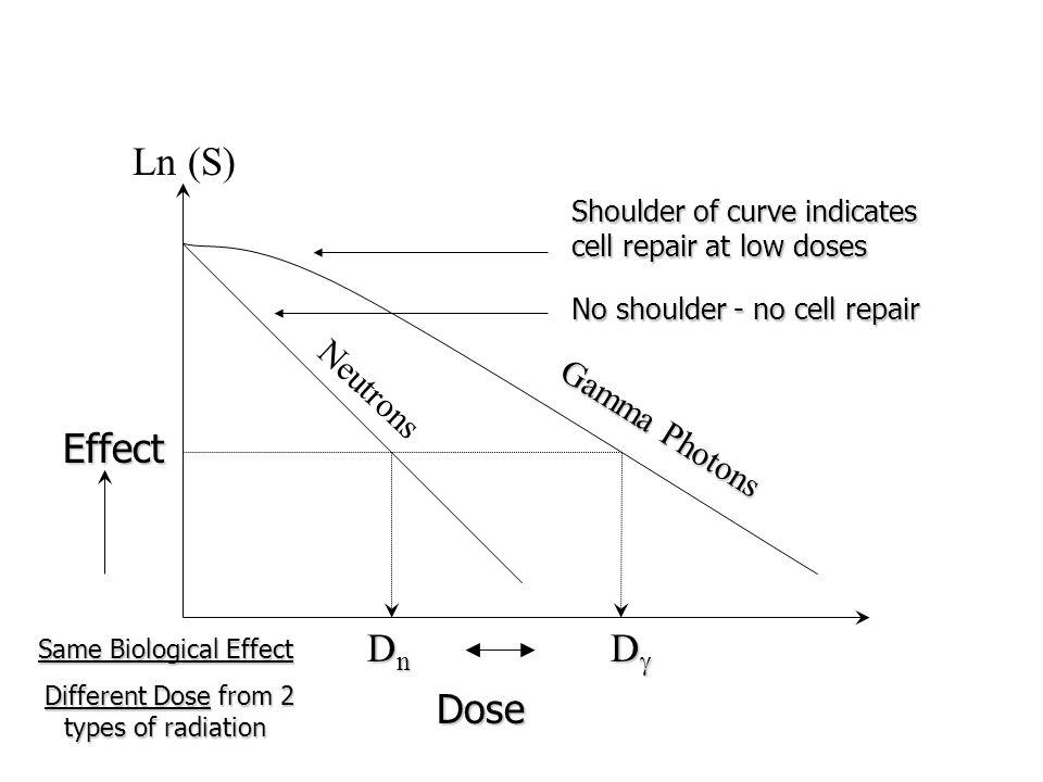 Ln (S) Effect Dose Neutrons Gamma Photons DnDnDnDn DDDD Same Biological Effect Different Dose from 2 types of radiation Different Dose from 2 type
