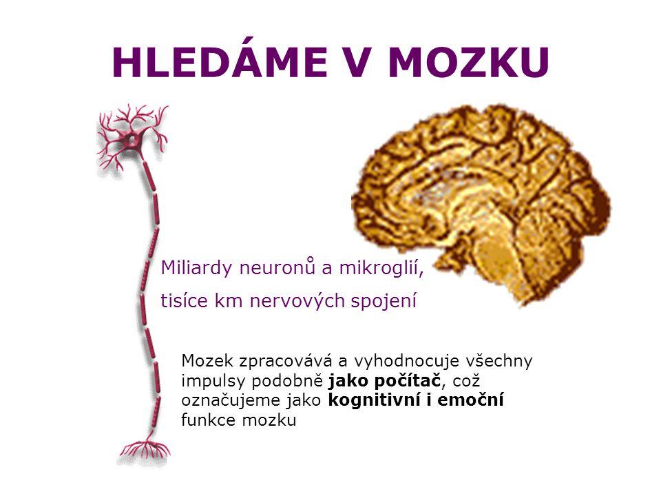 HLEDÁME V MOZKU Miliardy neuronů a mikroglií, tisíce km nervových spojení Mozek zpracovává a vyhodnocuje všechny impulsy podobně jako počítač, což označujeme jako kognitivní i emoční funkce mozku