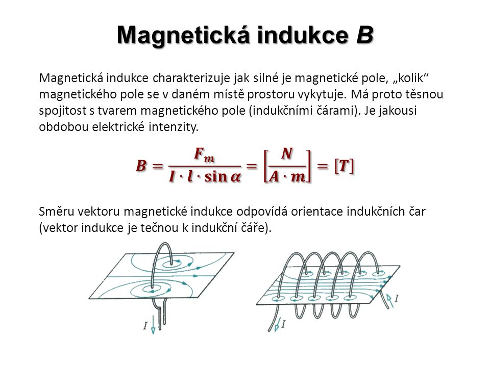 "Magnetická indukce B Magnetická indukce charakterizuje jak silné je magnetické pole, ""kolik magnetického pole se v daném místě prostoru vykytuje."
