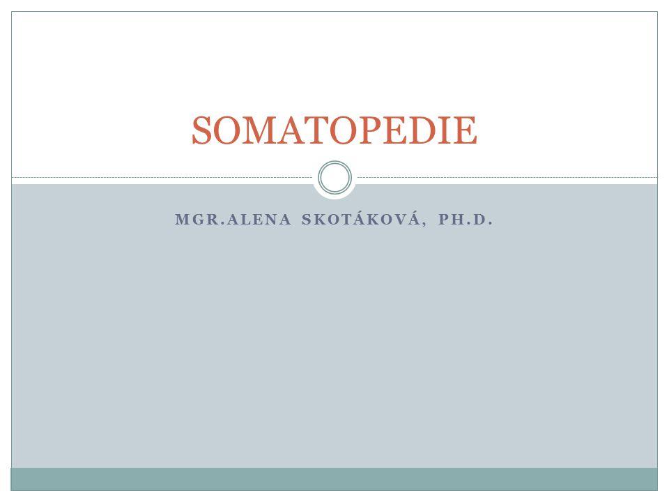 MGR.ALENA SKOTÁKOVÁ, PH.D. SOMATOPEDIE
