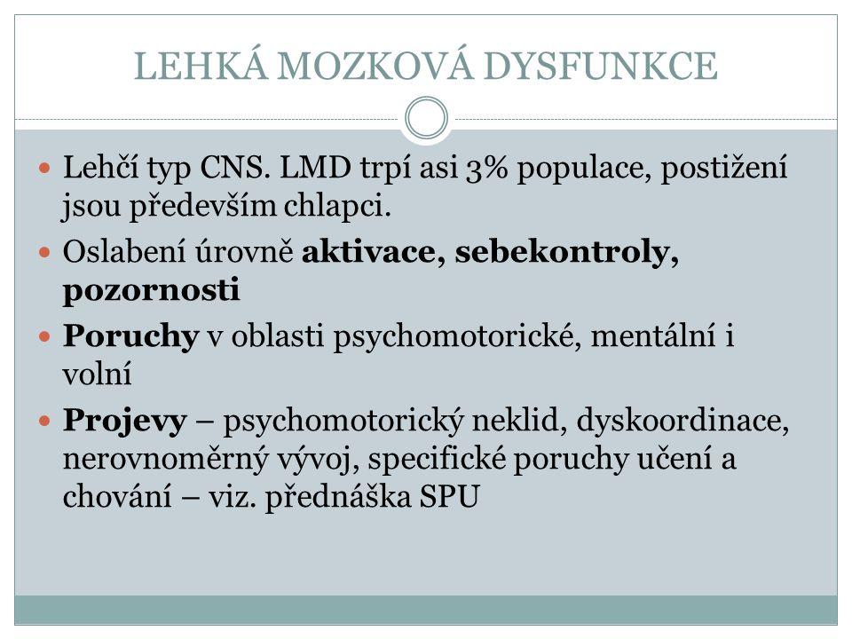 EPILEPSIE Široké spektrum neurologických i jiných systémových poruch.