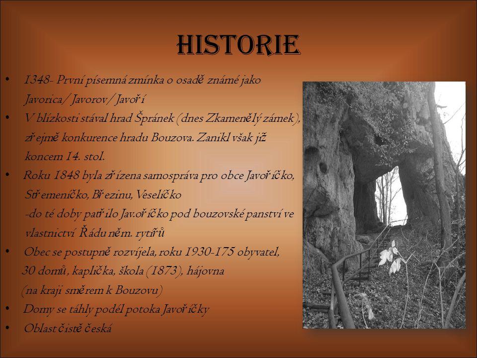 Historie 1348- První písemná zmínka o osad ě známé jako Javorica/ Javorov/ Javo ř í V blízkosti stával hrad Špránek (dnes Zkamen ě lý zámek), z ř ejm