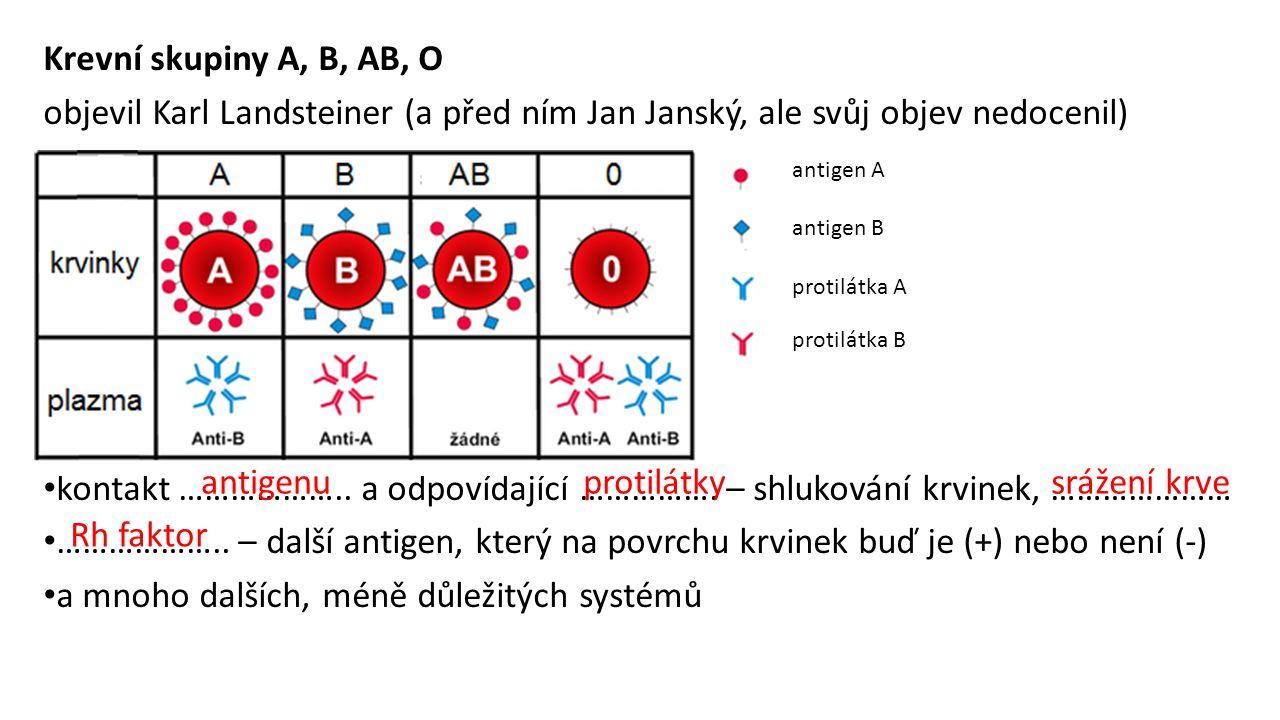 Krevní skupiny A, B, AB, O objevil Karl Landsteiner (a před ním Jan Janský, ale svůj objev nedocenil) kontakt ……………….. a odpovídající ……………. – shlukov