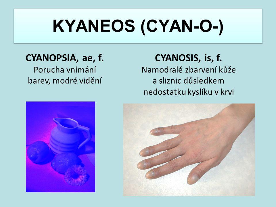 KYANEOS (CYAN-O-) CYANOPSIA, ae, f. Porucha vnímání barev, modré vidění CYANOSIS, is, f. Namodralé zbarvení kůže a sliznic důsledkem nedostatku kyslík