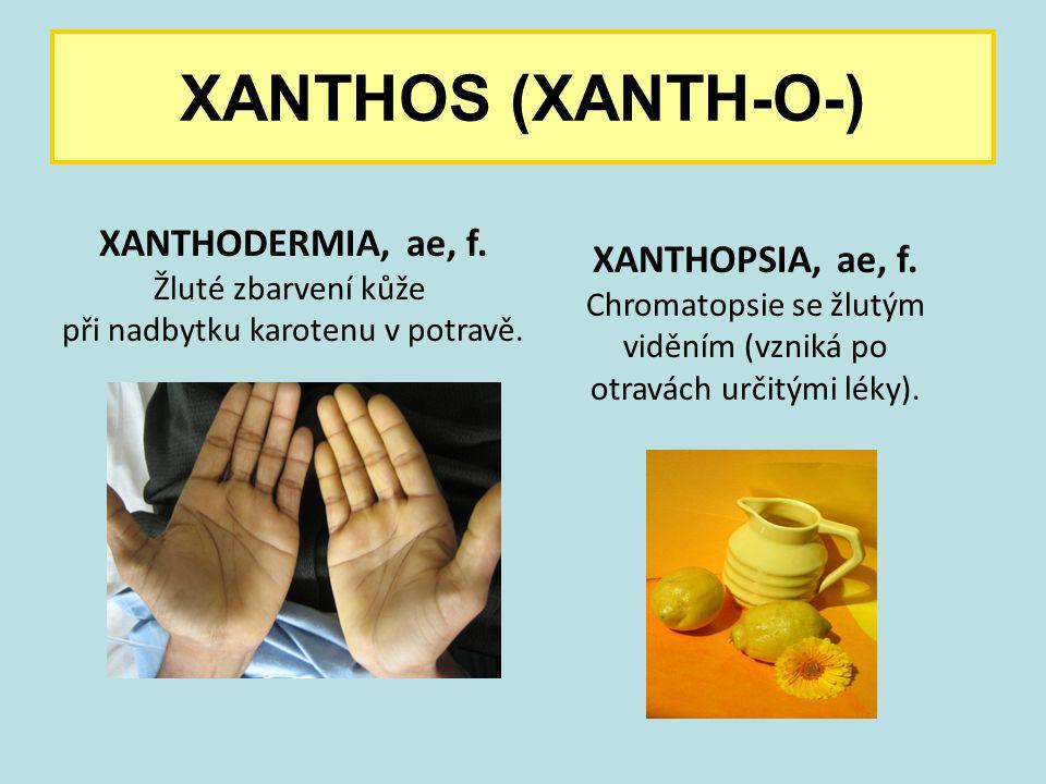 XANTHOS (XANTH-O-) XANTHODERMIA, ae, f. Žluté zbarvení kůže při nadbytku karotenu v potravě. XANTHOPSIA, ae, f. Chromatopsie se žlutým viděním (vzniká