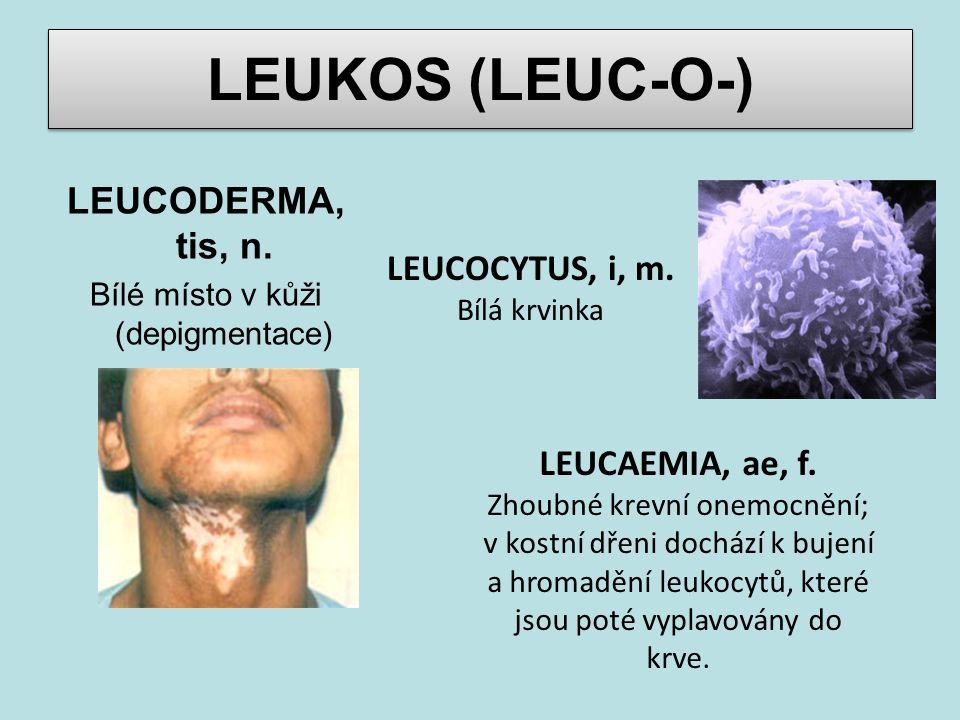LEUKOS (LEUC-O-) LEUCODERMA, tis, n. Bílé místo v kůži (depigmentace) LEUCAEMIA, ae, f. Zhoubné krevní onemocnění; v kostní dřeni dochází k bujení a h
