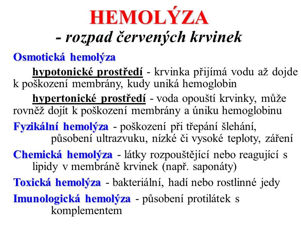 HEMOLÝZA Osmotická hemolýza hypotonické prostředí - krvinka přijímá vodu až dojde k poškození membrány, kudy uniká hemoglobin hypertonické prostředí -
