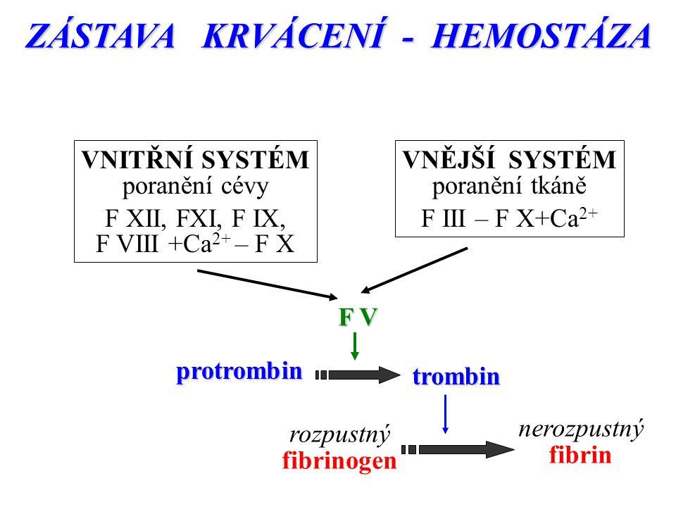 ZÁSTAVA KRVÁCENÍ - HEMOSTÁZA rozpustný fibrinogen nerozpustný fibrin VNITŘNÍ SYSTÉM poranění cévy F XII, FXI, F IX, F VIII +Ca 2+ – F X VNĚJŠÍ SYSTÉM poranění tkáně F III – F X+Ca 2+ protrombin trombin F V