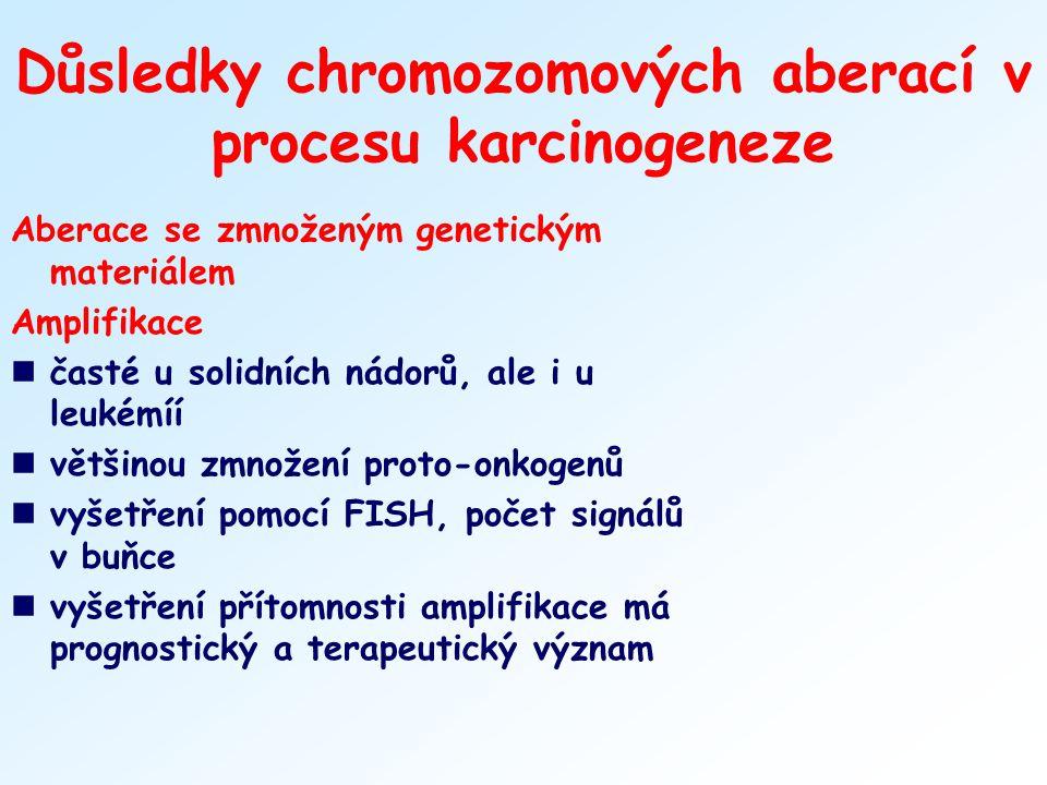 Důsledky chromozomových aberací v procesu karcinogeneze Aberace se zmnoženým genetickým materiálem Amplifikace nčasté u solidních nádorů, ale i u leuk