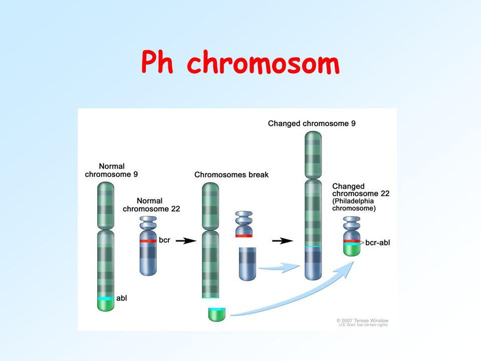Důsledky chromozomových aberací v procesu karcinogeneze ndelece nztráta části chromozomu, často postiženy nádorové-supresorové geny nebo geny pro stimulační a růstové faktory nLOH- ztráta heterozygotnosti v důsledku delece genu nu hematologických malignit specifické změny