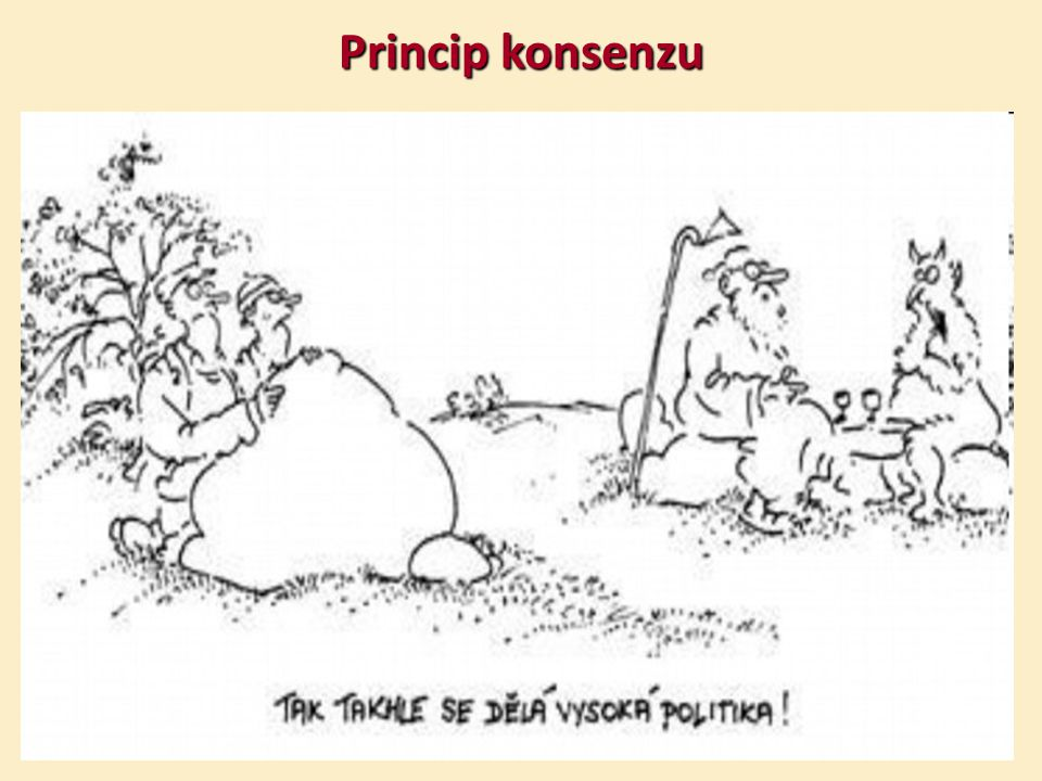 Princip konsenzu