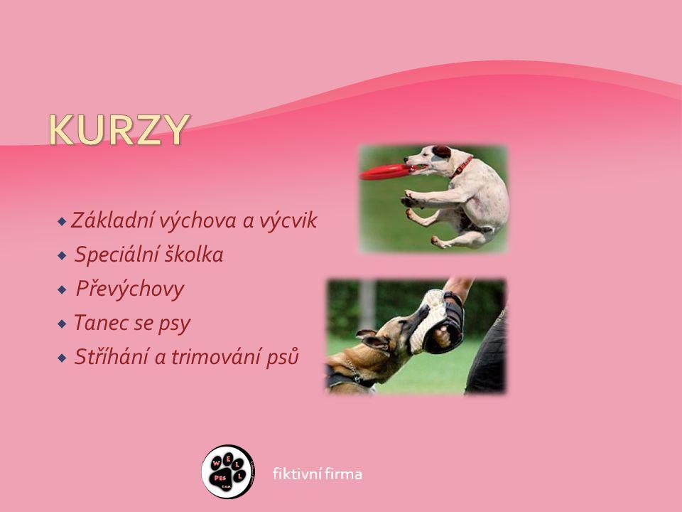  Základní výchova a výcvik  Speciální školka  Převýchovy  Tanec se psy  Stříhání a trimování psů fiktivní firma