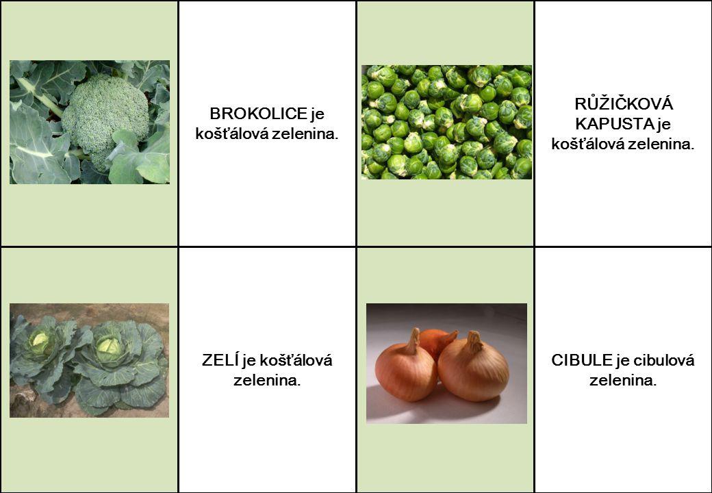 BROKOLICE je košťálová zelenina. ZELÍ je košťálová zelenina. RŮŽIČKOVÁ KAPUSTA je košťálová zelenina. CIBULE je cibulová zelenina.