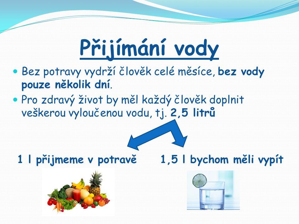 Přijímání vody Bez potravy vydrží člověk celé měsíce, bez vody pouze několik dní.