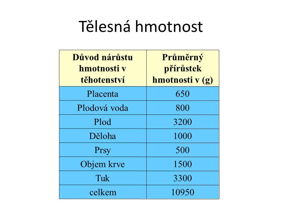 Tělesná hmotnost Důvod nárůstu hmotnosti v těhotenství Průměrný přírůstek hmotnosti v (g) Placenta650 Plodová voda800 Plod3200 Děloha1000 Prsy500 Obje
