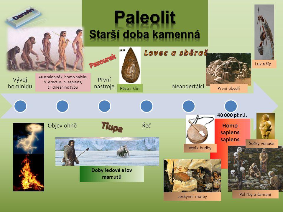 Vývoj hominidů Objev ohně První nástroje Řeč Neandertálci Homo sapiens sapiens Australopiték, homo habilis, h. erectus, h. sapiens, čl. dnešního typu