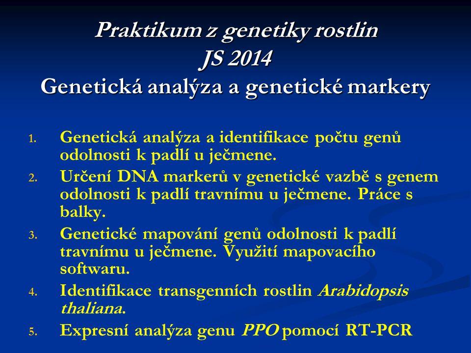 Praktikum z genetiky rostlin JS 2014 Genetická analýza a genetické markery 1.