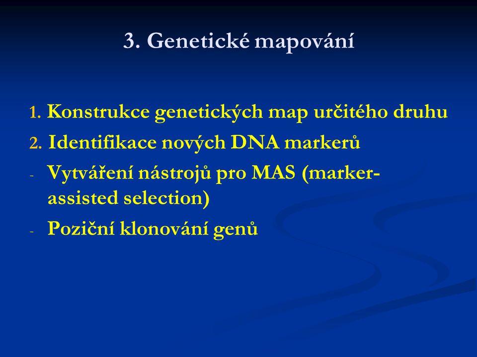 Využití genetických markerů Základní výzkum i šlechtění Studium rostlinných genomů 1. 1. Otisk DNA (fingerprinting) 2. 2. Stanovení evolučních vztahů