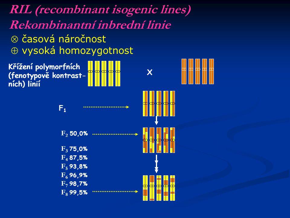 Speciální problémy řešitelné mapováním u druhů s velkým genomem Podrobné mapování určité oblasti genomu Identifikace DNA markerů v těsné vazbě s genem