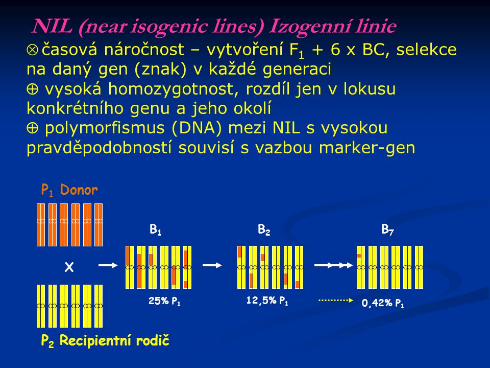 RIL (recombinant isogenic lines) Rekombinantní inbrední linie F 2 50,0% F 3 75,0% F 4 87,5% F 5 93,8% F 6 96,9% F 7 98,7% F 8 99,5% F1F1 X Křížení pol