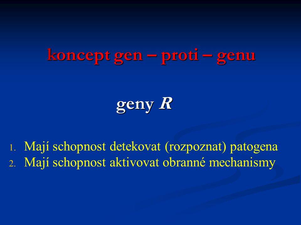 Genetické aspekty choroby Rostlina (hostitel)Patogen Rostlina (hostitel) Patogen genom 1genom 2 genom 1 genom 2 geny odolnosti R geny avirulence Avr v