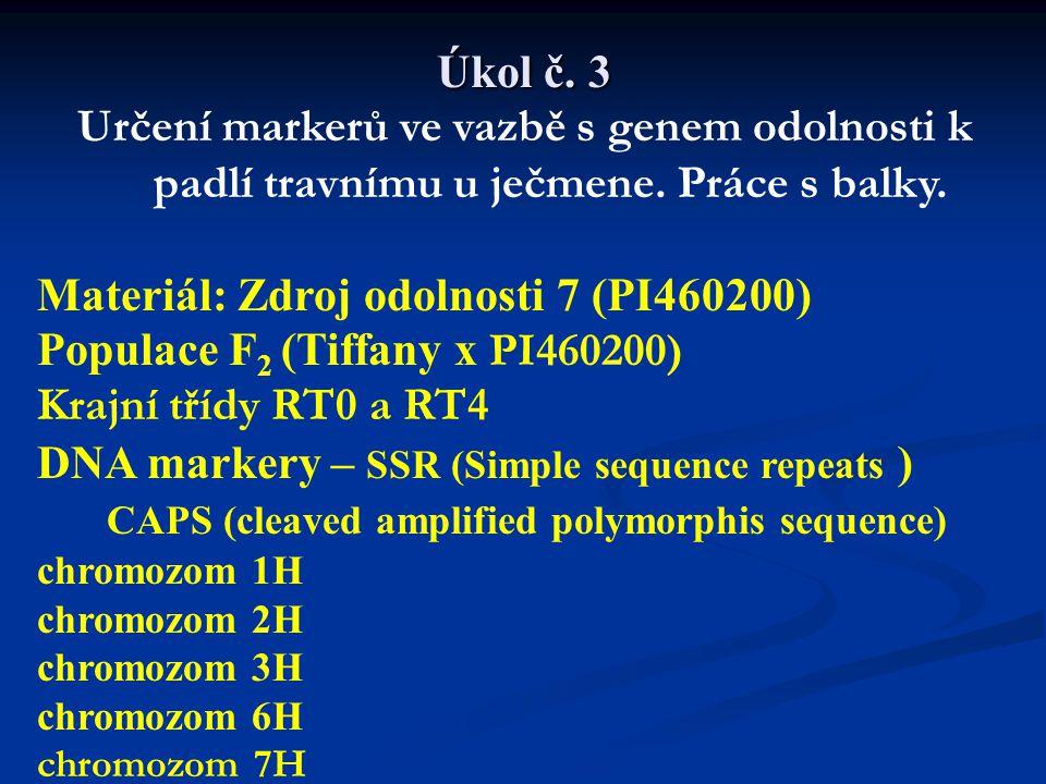 Rostliny rodičovské, F 1 i jednotlivé rostliny F2 jsou otestovány virulentním izolátem Bgh Stupnice hodnocení: 0, 0-1, 1, 1-2, 2, 2-3, 3, 3-4, 4 0 až