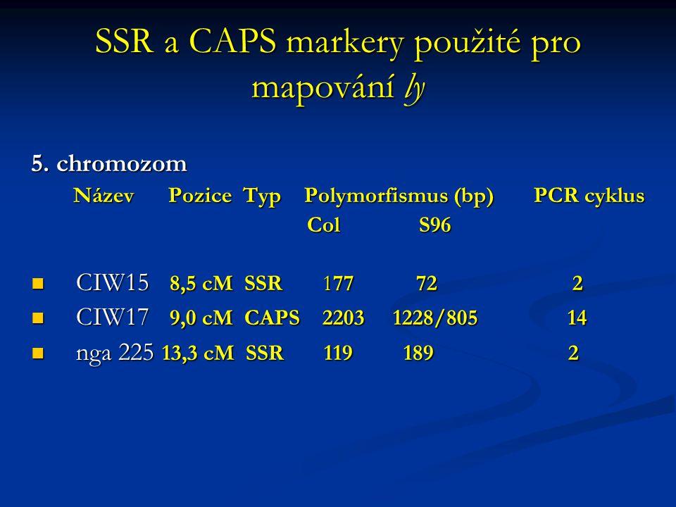 Schéma CAPS markerů