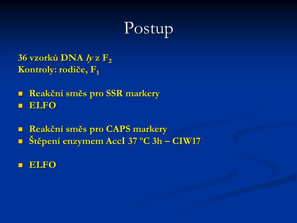 SSR a CAPS markery použité pro mapování ly 5. chromozom Název Pozice Typ Polymorfismus (bp) PCR cyklus Název Pozice Typ Polymorfismus (bp) PCR cyklus