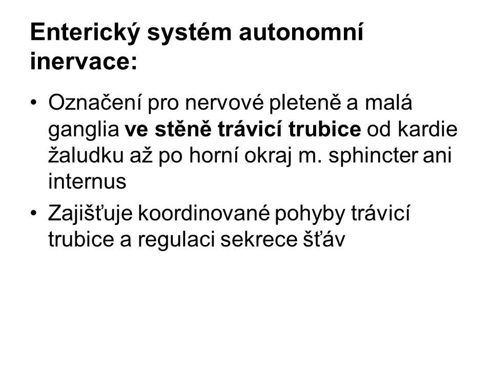 Enterický systém autonomní inervace: Označení pro nervové pleteně a malá ganglia ve stěně trávicí trubice od kardie žaludku až po horní okraj m. sphin