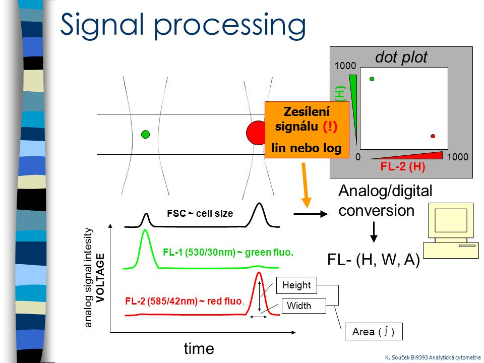 Signal processing time analog signal intesity VOLTAGE FSC ~ cell size FL-1 (530/30nm) ~ green fluo. FL-2 (585/42nm) ~ red fluo. Analog/digital convers