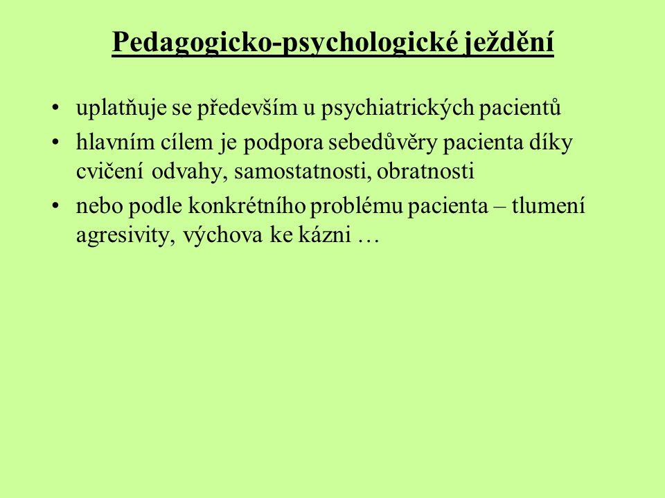 Pedagogicko-psychologické ježdění uplatňuje se především u psychiatrických pacientů hlavním cílem je podpora sebedůvěry pacienta díky cvičení odvahy,