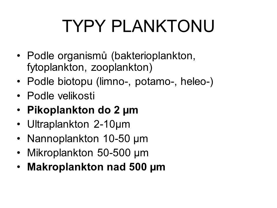 TYPY PLANKTONU Podle organismů (bakterioplankton, fytoplankton, zooplankton) Podle biotopu (limno-, potamo-, heleo-) Podle velikosti Pikoplankton do 2 µm Ultraplankton 2-10µm Nannoplankton 10-50 µm Mikroplankton 50-500 µm Makroplankton nad 500 µm