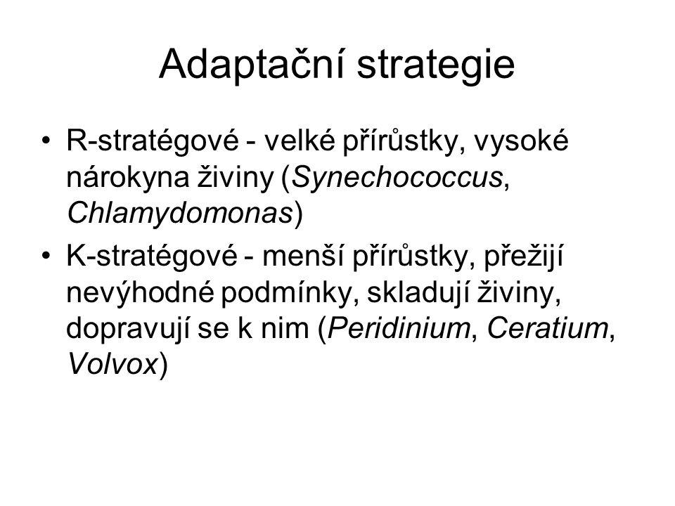 Adaptační strategie R-stratégové - velké přírůstky, vysoké nárokyna živiny (Synechococcus, Chlamydomonas) K-stratégové - menší přírůstky, přežijí nevýhodné podmínky, skladují živiny, dopravují se k nim (Peridinium, Ceratium, Volvox)