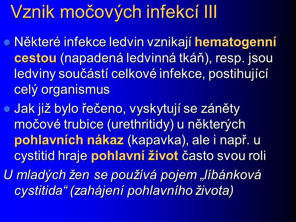 Vznik močových infekcí III Některé infekce ledvin vznikají hematogenní cestou (napadená ledvinná tkáň), resp. jsou ledviny součástí celkové infekce, p
