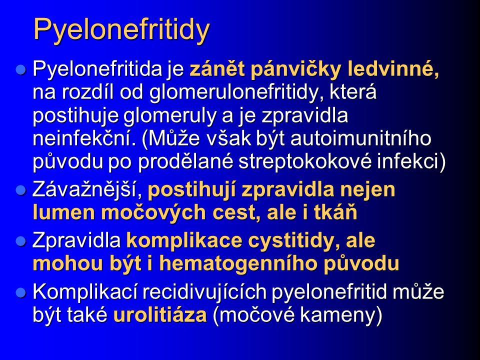 Pyelonefritidy Pyelonefritida je zánět pánvičky ledvinné, na rozdíl od glomerulonefritidy, která postihuje glomeruly a je zpravidla neinfekční.
