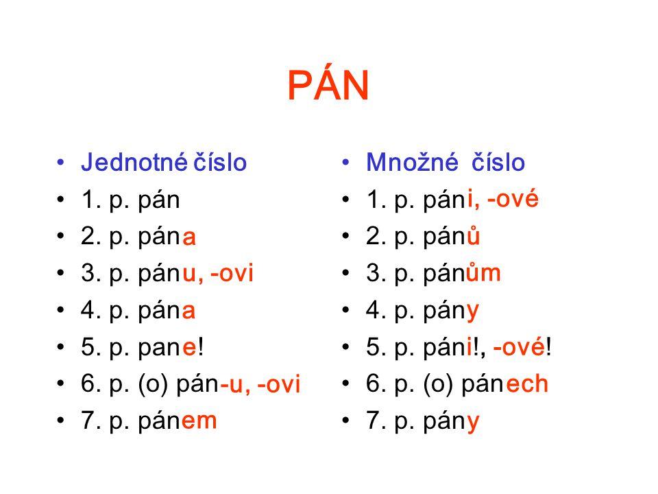 PÁN Jednotné číslo 1. p. pán 2. p. pán 3. p. pán 4. p. pán 5. p. pan 6. p. (o) pán 7. p. pán Množné číslo 1. p. pán 2. p. pán 3. p. pán 4. p. pán 5. p