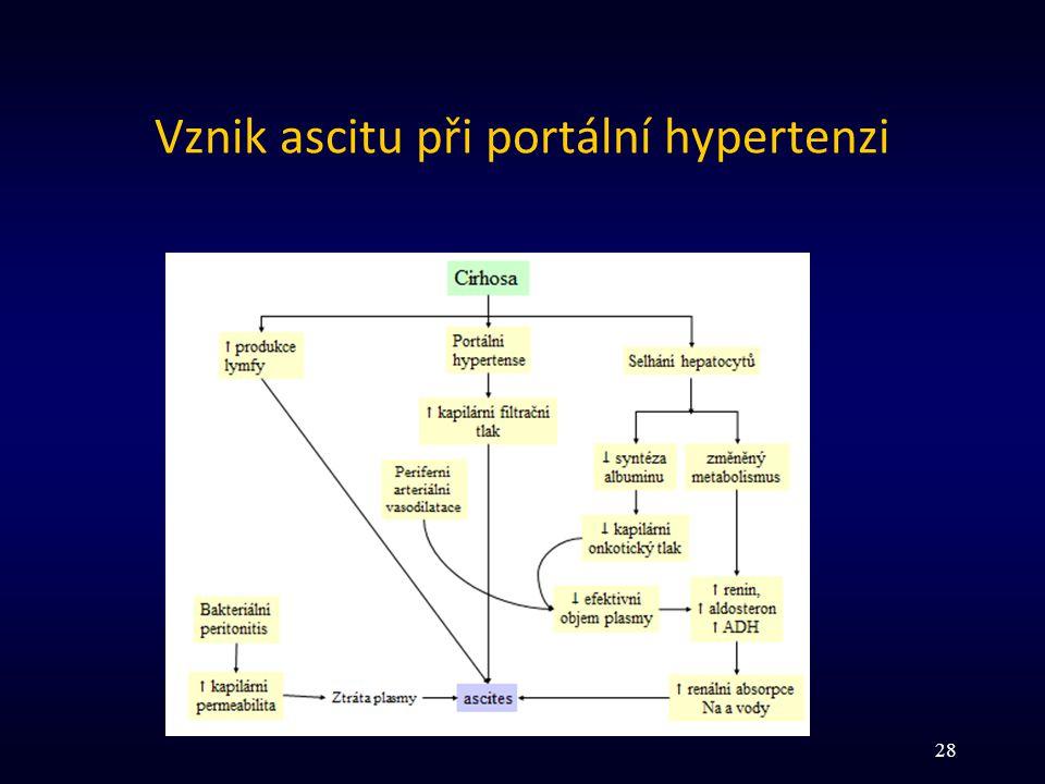 Vznik ascitu při portální hypertenzi 28