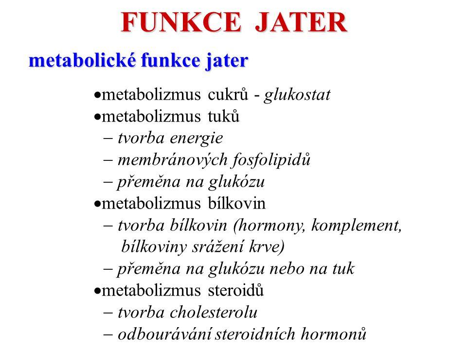  metabolizmus cukrů - glukostat  metabolizmus tuků  tvorba energie  membránových fosfolipidů  přeměna na glukózu  metabolizmus bílkovin  tvorba bílkovin (hormony, komplement, bílkoviny srážení krve)  přeměna na glukózu nebo na tuk  metabolizmus steroidů  tvorba cholesterolu  odbourávání steroidních hormonů metabolické funkce jater FUNKCE JATER