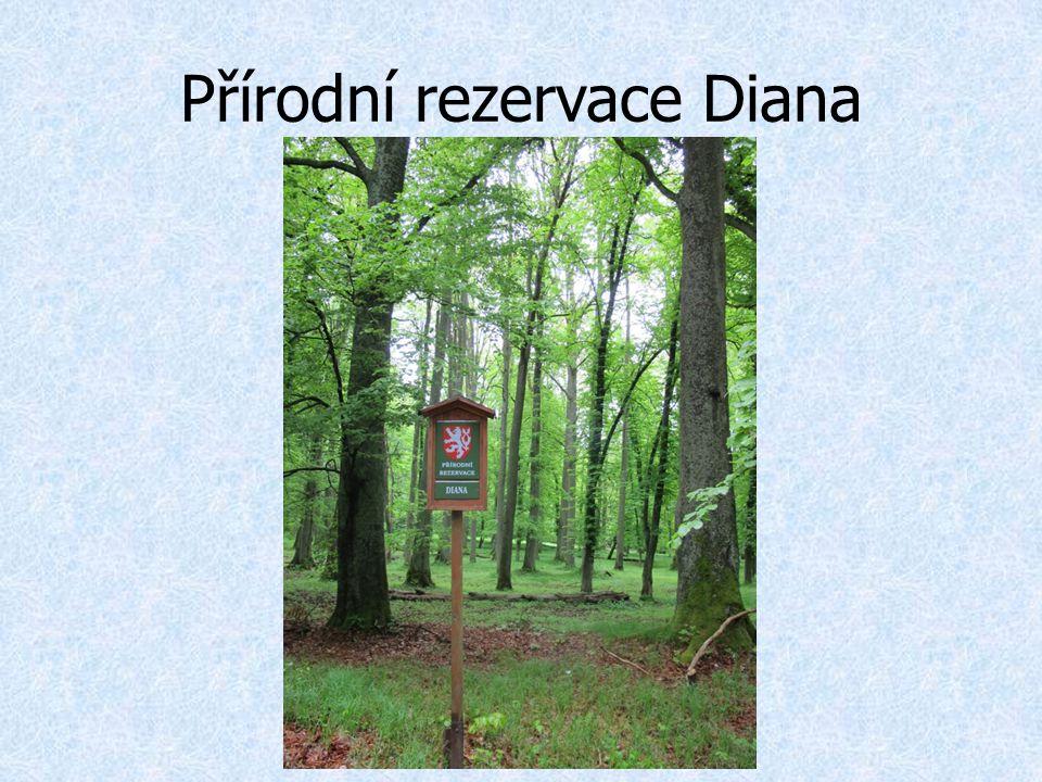 Přírodní rezervace Diana