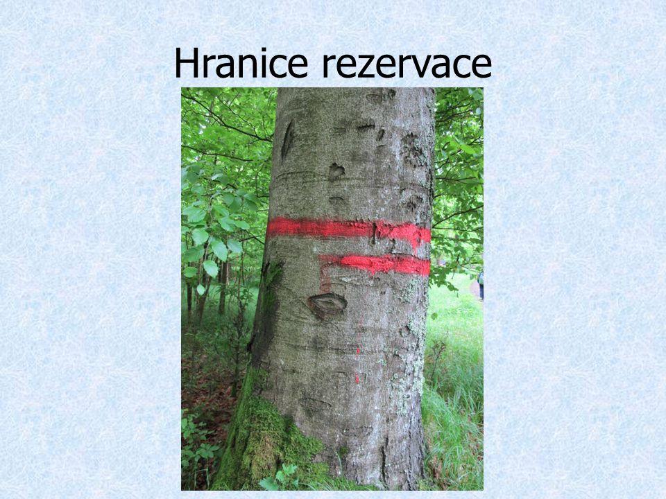 Hranice rezervace