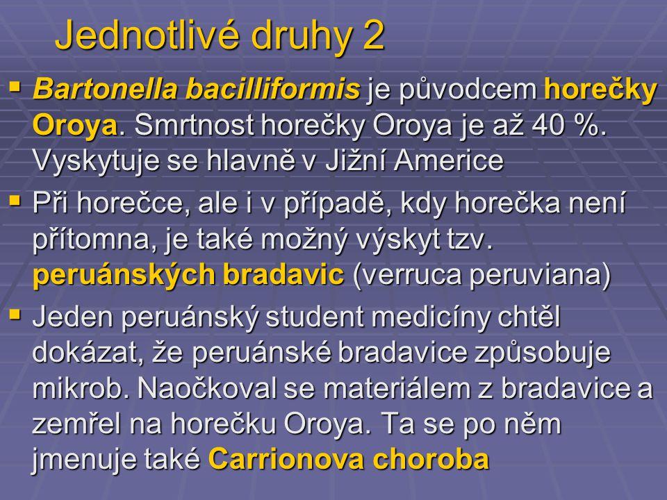 Jednotlivé druhy 2  Bartonella bacilliformis je původcem horečky Oroya. Smrtnost horečky Oroya je až 40 %. Vyskytuje se hlavně v Jižní Americe  Při