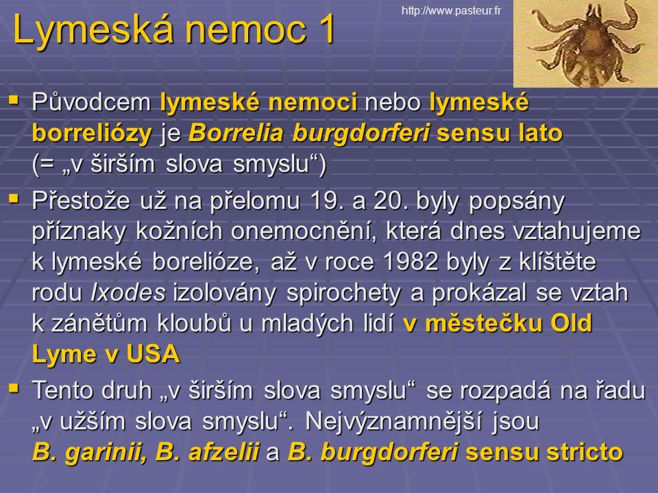 """Lymeská nemoc 1  Původcem lymeské nemoci nebo lymeské borreliózy je Borrelia burgdorferi sensu lato (= """"v širším slova smyslu )  Přestože už na přelomu 19."""