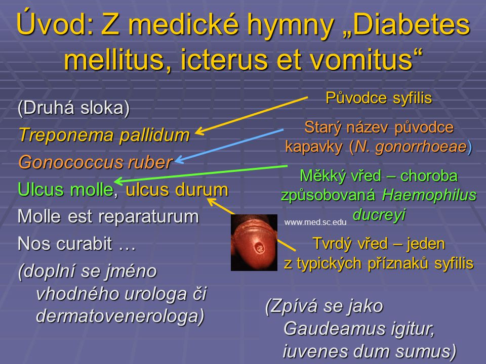 "Úvod: Z medické hymny ""Diabetes mellitus, icterus et vomitus (Druhá sloka) Treponema pallidum Gonococcus ruber Ulcus molle, ulcus durum Molle est reparaturum Nos curabit … (doplní se jméno vhodného urologa či dermatovenerologa) Původce syfilis Starý název původce kapavky (N."
