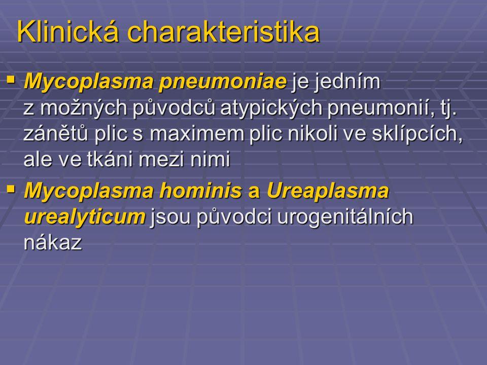 Klinická charakteristika  Mycoplasma pneumoniae je jedním z možných původců atypických pneumonií, tj. zánětů plic s maximem plic nikoli ve sklípcích,